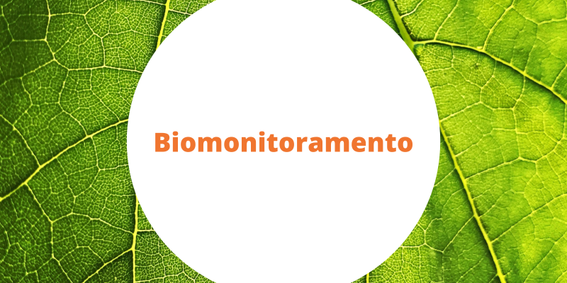 Artigo: Como monitorar a contaminação ambiental utilizando plantas tropicais