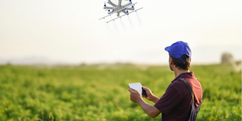 O cenário das Agtechs cresce e já são cerca de 338 startups de tecnologia agrícola no Brasil