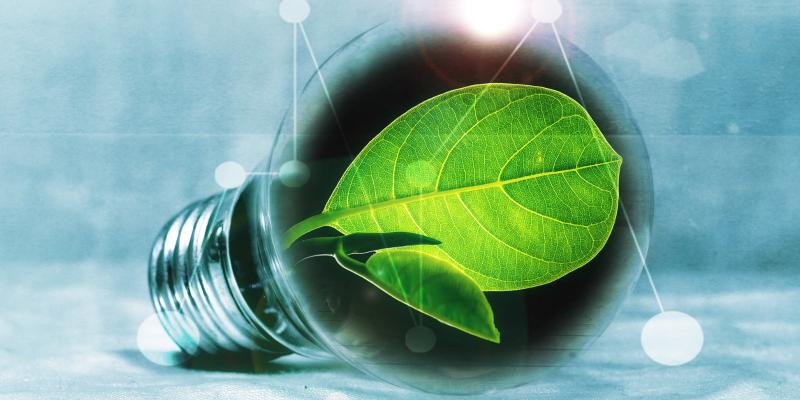 Artigo: Responsabilidade socioambiental é cada vez mais estratégica para as empresas