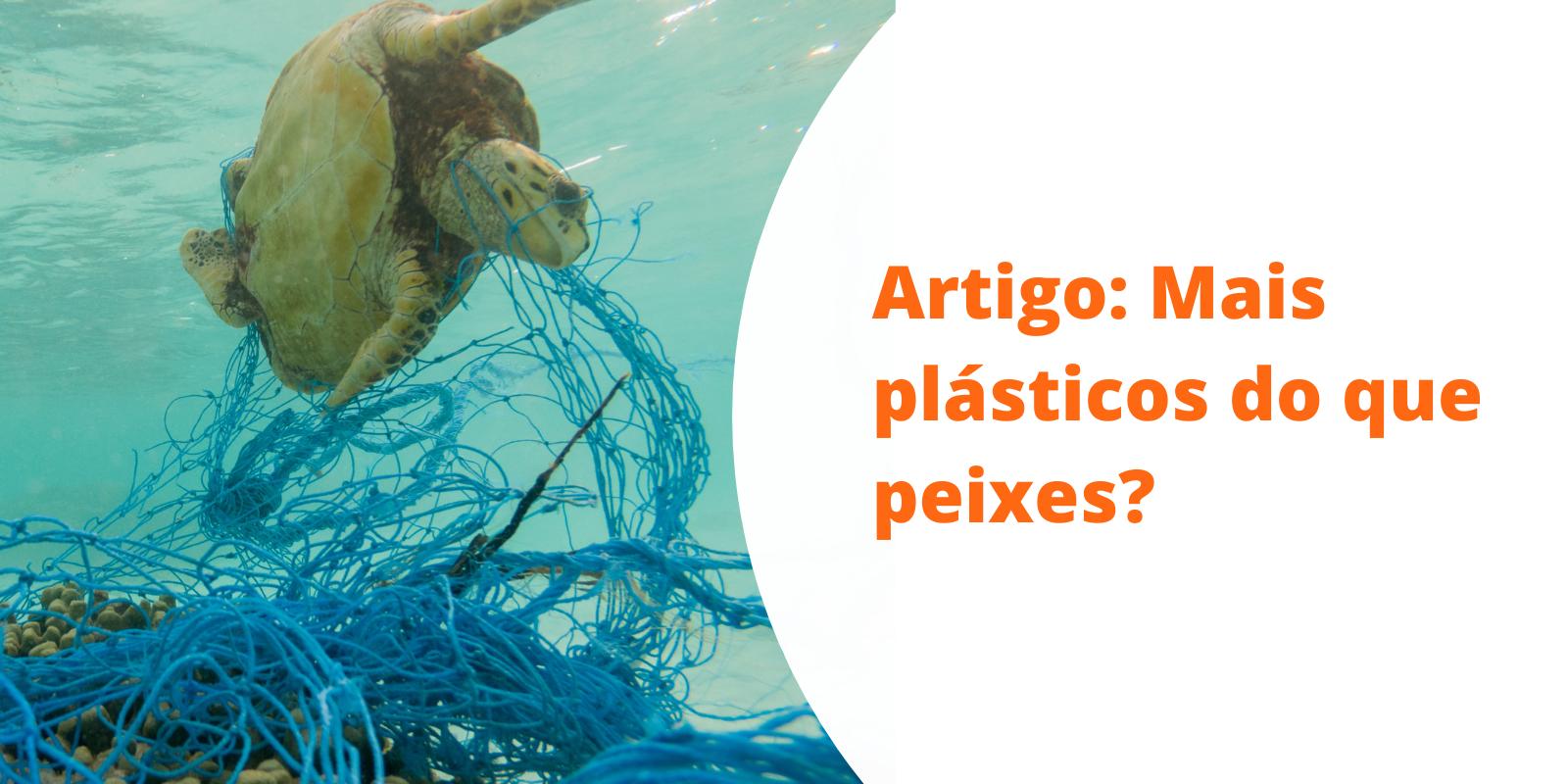 Imagem: Artigo: A gestão sustentável dos petrechos utilizados na pesca e aquicultura