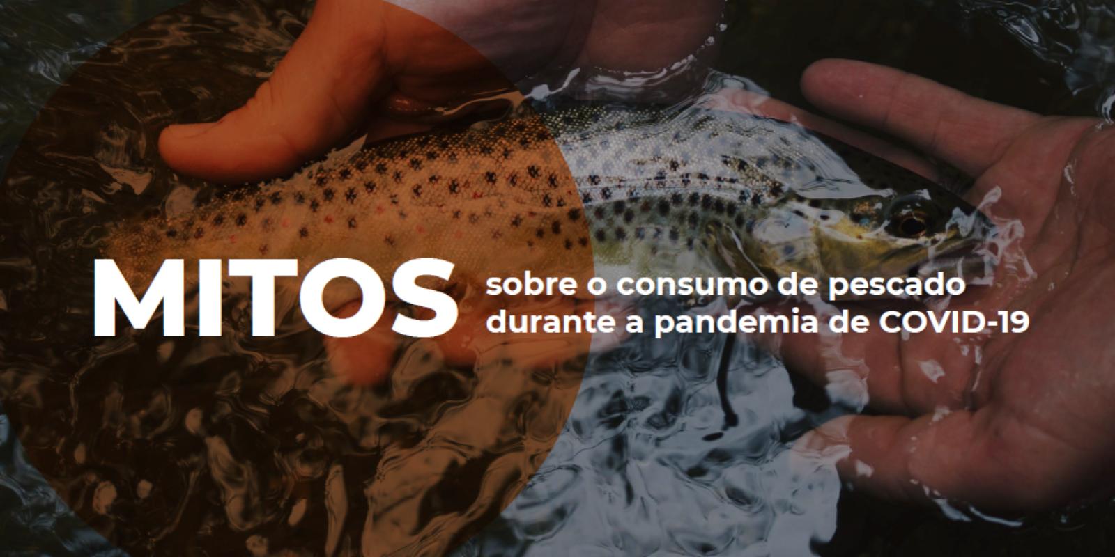 Imagem: Informativo: Mitos sobre o consumo de pescado durante a pandemia de COVID-19