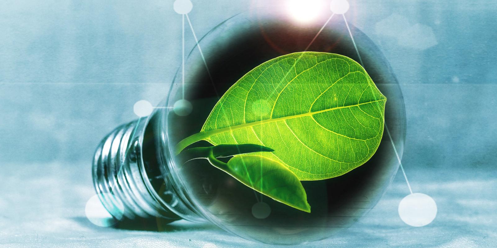 Imagem: Artigo: Responsabilidade socioambiental é cada vez mais estratégica para as empresas