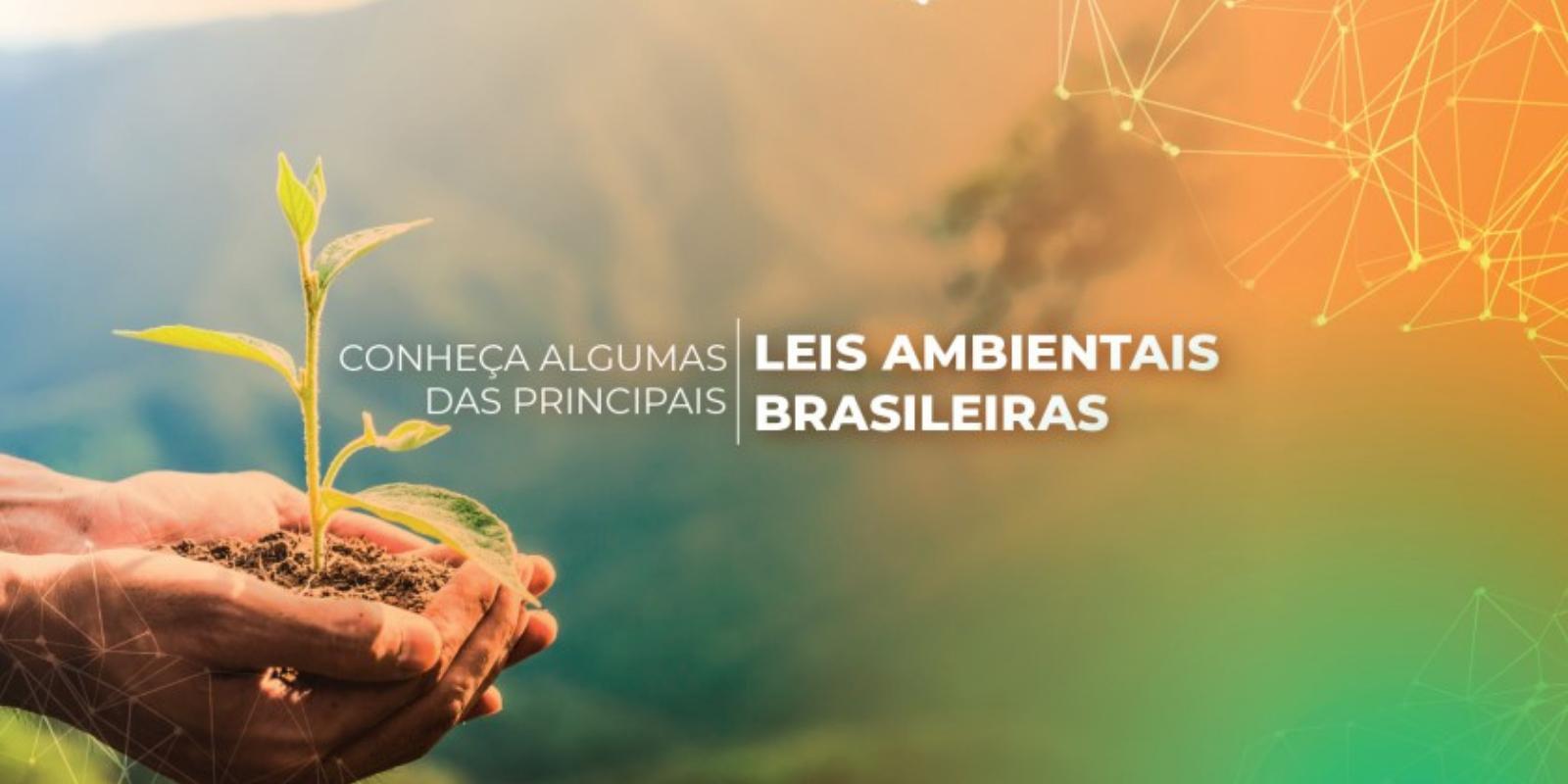 Imagem: Principais leis ambientais brasileiras